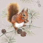 Craft Emotions Napkins 5pcs - Squirrel in Winter - 111331/3445